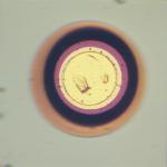 gunn-diode